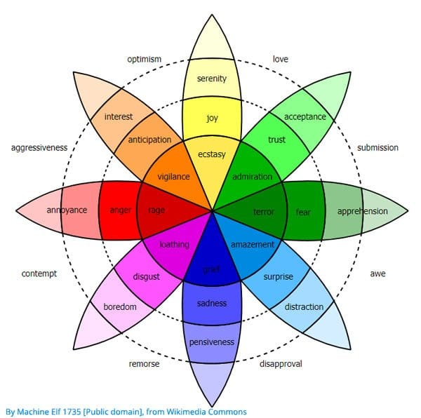 Emotion Wheel - Plutchik Wheel