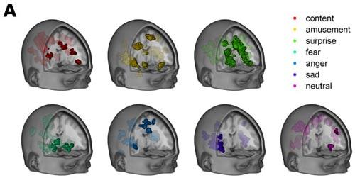 Credit: Decodarea Stărilor Emoționale Spontane în Creierul Uman -Philip A. Kragel, Annchen R. Knodt, Ahmad R. Hariri, Kevin S. LaBar